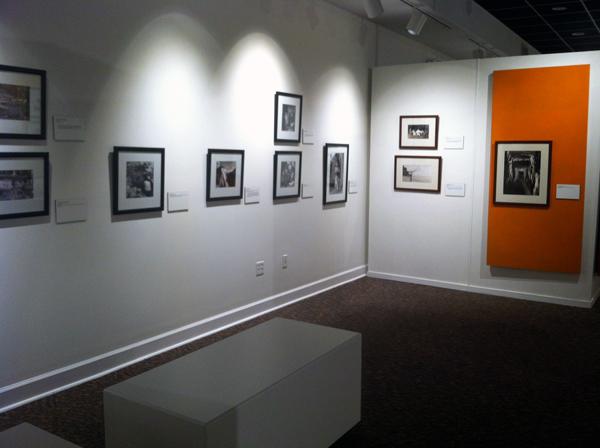 نمایشگاه ماجرهای عکاسی - موزه جنوب فلوریدا